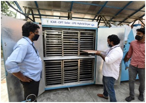 Skill Development Programme on Pre-processing and Drying of Fish