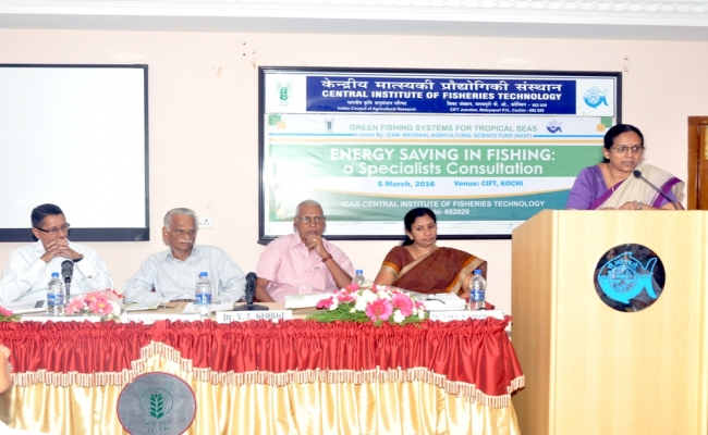 Specialist Consultation on Energy Saving in Fishing